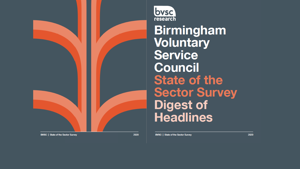 BVSC State of the Sector Report: Digest of Headlines