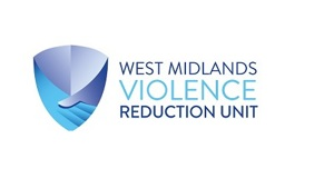 VRU Domestic Abuse regional systems review questionnaire
